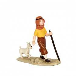 Pixi Moulinsart Tintin - 3ème série - Tintin et Milou dans le désert