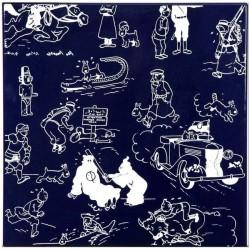"""Plaque émaillée Tintin - Pages de garde """"Bleues"""" 35x35"""