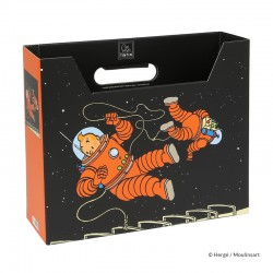 "Papeterie Moulinsart Tintin - Boîte à archives ""Tintin et Haddock Lune"""