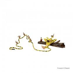 Pixi Franquin Marsu - Marsupilami, la sieste aux oiseaux
